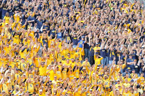 Mountaineer Nation United